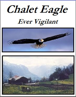 Chalet Eagle Graphic
